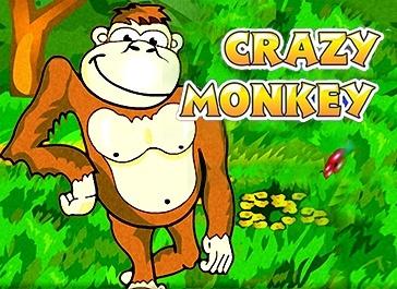 онлайн игровой автомат crazy monkey бесплатно